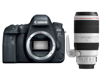 Canon EOS 6D Mark II + EF 100-400 f/4.5-5.6L IS II USM